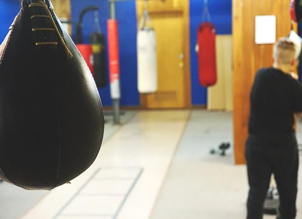 Building a Boxer