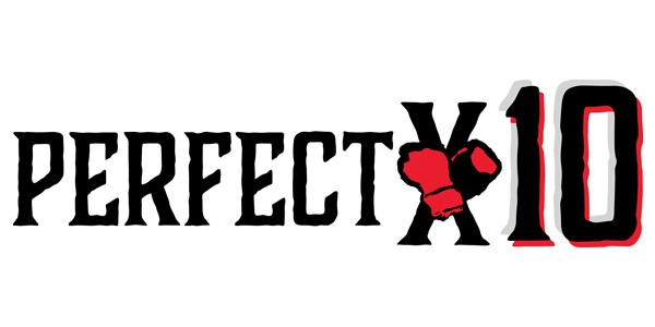The Good Fight - Perfect 10 Summer Program - Logo.